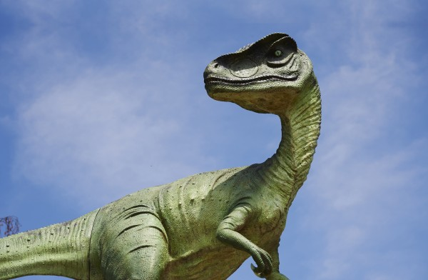 rye-assic adventure park dino